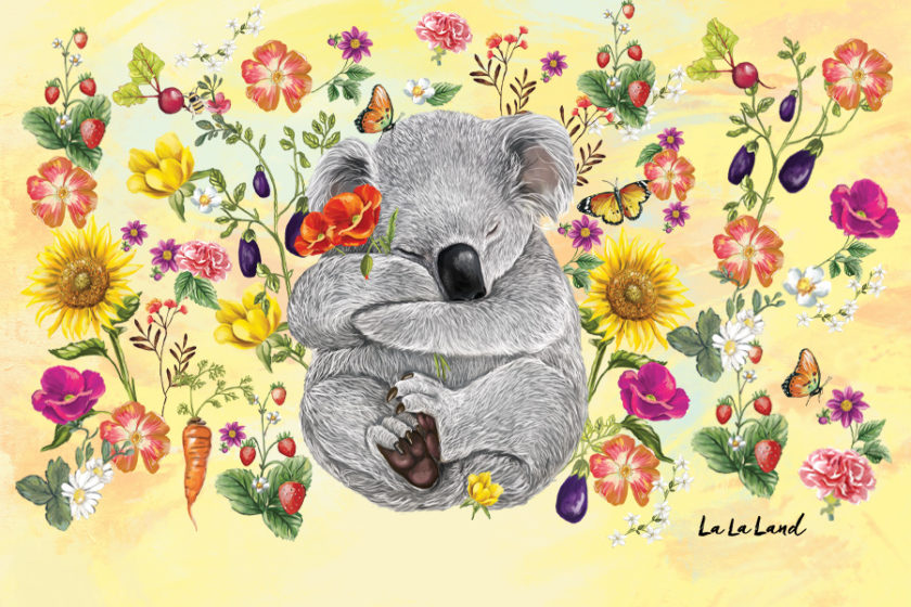 secret-garden-koala
